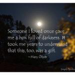 The Dark Gift